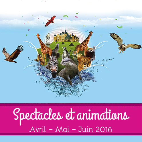 spectacles-animations-2016jpg